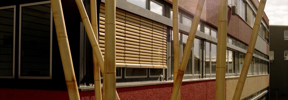 Tatort-due-Fassade-Bambus