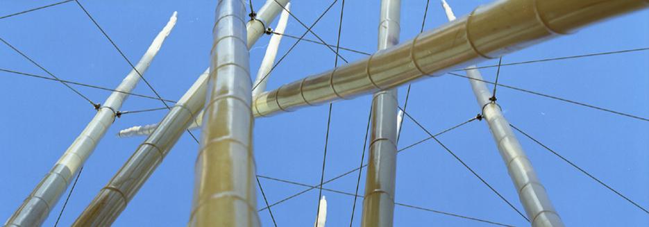 bambus-1-slideshow